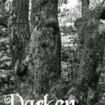 Darken Wood