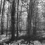The Ancient Ruins of the Druids